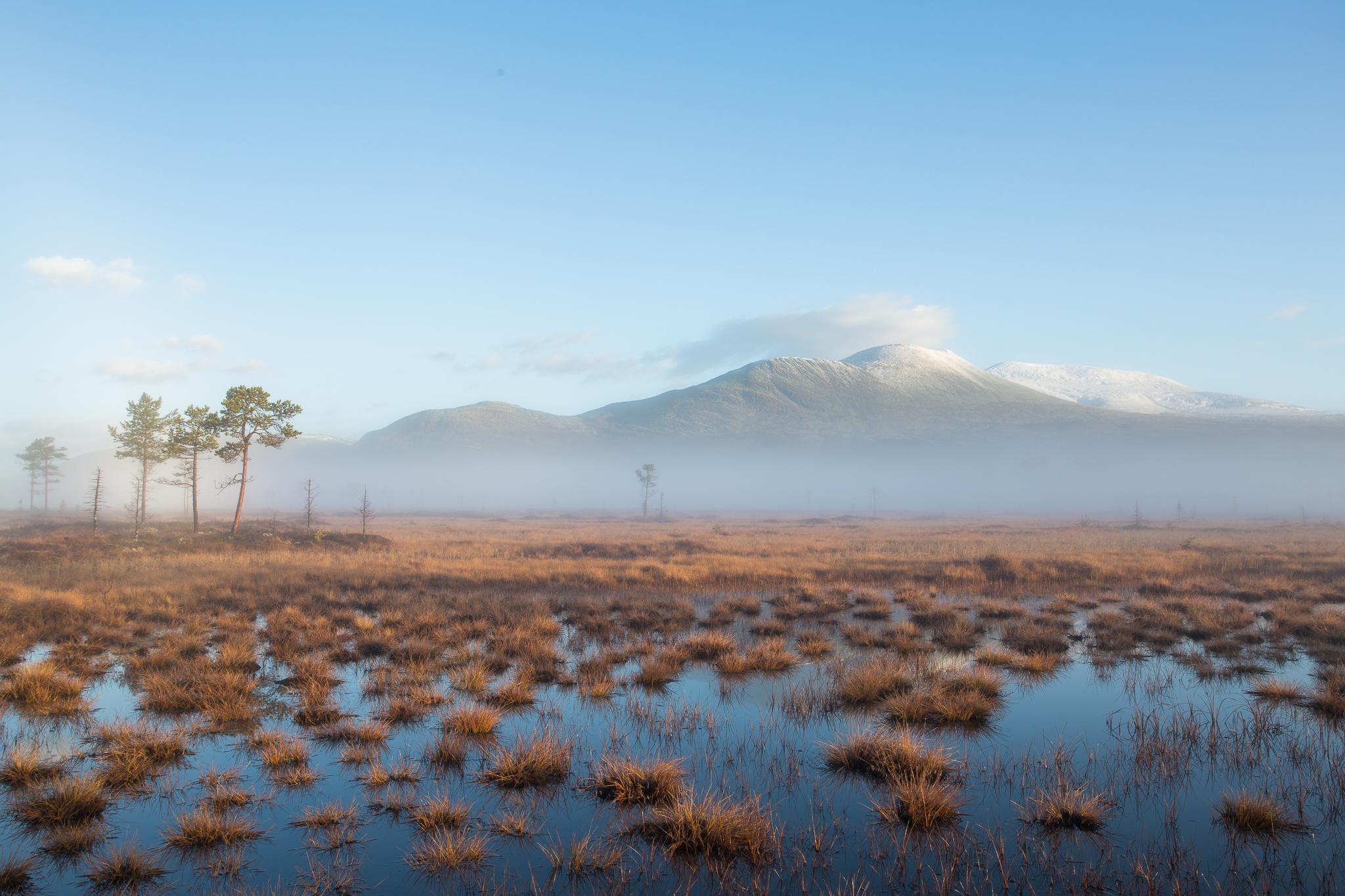 Sølen landskapsvernområde